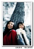 台中-武陵農場賞秋楓:PAGE 15.jpg
