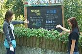 台中-新社薰衣草森林:092