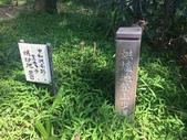 短程旅遊:IMG_8718.JPG