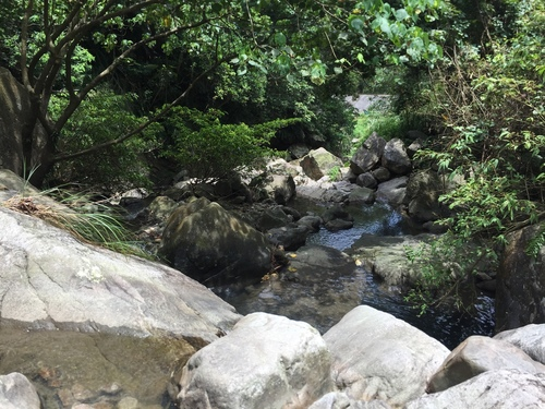 IMG_1684.JPG - 跑馬古道露營區/猴洞坑瀑布/大溪國小~