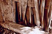 [2011]眷村文化館-廢墟禁止進入:DSC_0949.jpg