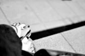 [11]0910半夜兩點35mm1.8 試拍:DSC_1246.JPG