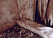 [2011]眷村文化館-廢墟禁止進入:DSC_0950.jpg
