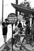 [11]0604嘉義板頭村(上):CSC_1177.jpg
