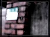[10]1213金瓜石半日遊:DSC_0012.jpg