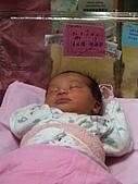 200509我的寶貝:IMGP0027
