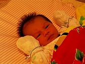200509我的寶貝:IMGP0040