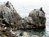 20080713 基隆嶼 登山:P1080982.JPG