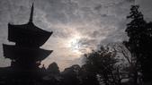 寂寞帶我去散步:成田寺新勝寺