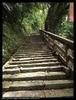 獅山古道步道1