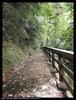 獅山古道步道2
