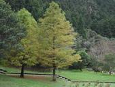 2011.11.18宜蘭遊 :SAM_0528.JPG