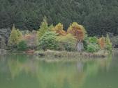 2011.11.18宜蘭遊 :SAM_0537.JPG