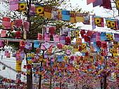 城市嬉遊記-2009台北燈節:R0010282.JPG