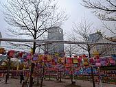 城市嬉遊記-2009台北燈節:R0010283.JPG