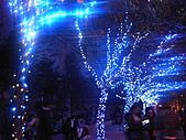 城市嬉遊記-2011跨年 :R0018263.JPG