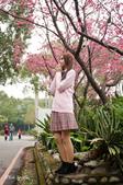 20150208_梅杜莎@台大校園外拍:_MG_3892.jpg