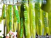 plurk 2009手寫祈願活動:封面.jpg