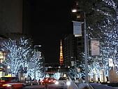 2009 秋‧Back to Japan:六本木けやき坂通り