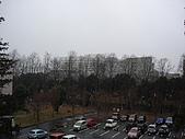 08‧冬‧in Tsukuba:090124 筑波初雪