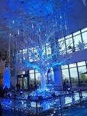 東京・2011・Xmas illumination:お台場・Aqua City