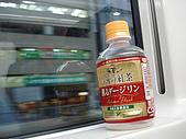 2009 秋‧Back to Japan:in Narita Express