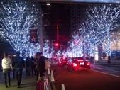 東京・2011・Xmas illumination:六本木・けやき坂通り