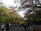 東京‧090412‧上野‧神保町:090412 上野公園