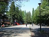 東京‧090429‧吉祥寺‧芝公園:井の頭公園