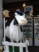 群馬‧090613‧軽井沢:牛乳に相談だ。