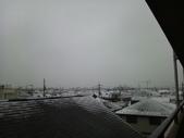 東京‧2012年1-3月:初雪