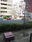 追逐J字標記:090406 三ノ宮‧J Friends 紀念碑 & 樹