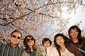 日本四國上98:20090409日本四國017.JPG