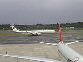 成田機場展望台:東方航空 A-340-600