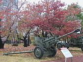 韓國戰爭紀念館:俄軍76.2mm戰防砲
