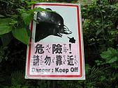 台北市立動物園:DSCN0906
