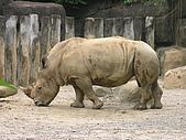 台北市立動物園:DSCN0942