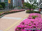 2005京阪神:神戶-市役所前