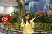 桜の雨 首部曲:2008.4.03 桃園機場第二航廈 - 阿里山小火車場景佈置