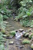 樂活主義:2007.4.21 發現小溪流