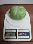 白柿:照片 005.jpg