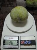 白柿:IMG_4418.jpg