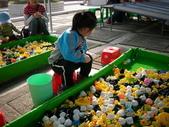 台中豐樂公園釣鴨:DSCN8614
