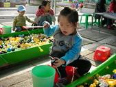 台中豐樂公園釣鴨:DSCN8613