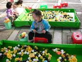 台中豐樂公園釣鴨:DSCN8623