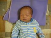 我們家的男寶寶:DSCN7013