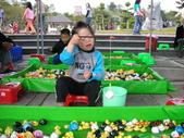 台中豐樂公園釣鴨:DSCN8624