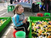 台中豐樂公園釣鴨:DSCN8618