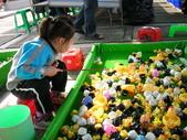 台中豐樂公園釣鴨:DSCN8612