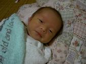 我們家的男寶寶:2